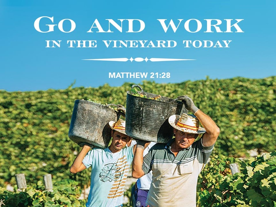 Word for the Week - Sunday, September 27, 2020 - Lectionary 26, Year A